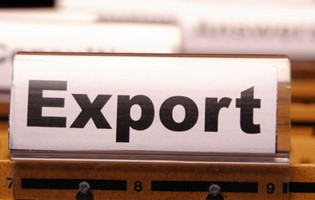 Application for Export Permit through Mauritius Trade Link