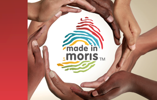 Amended Margins of Preference for Goods in Public Contracts for SMEs - Made in Moris