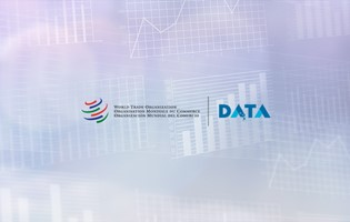 WTO launches revamped WTO Data portal and new API portal