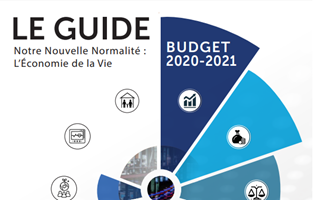 Budget 2020-2021 : Solidarity Levy : Plafonnement de 25%