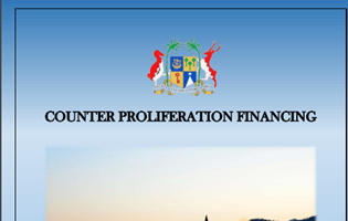 Guidelines on the Implementation of Targeted Financial Sanctions Under The United Nations (Financial Prohibitions, Arms Embargo And Travel Ban) Sanctions Act 2019
