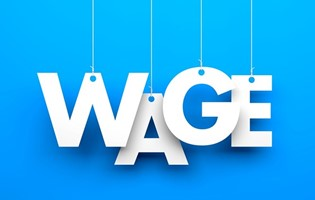 Government Wage Assistance Scheme & Self-Employed Assistance Scheme